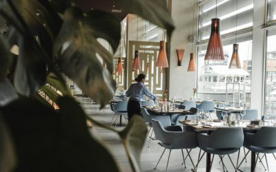 Moscas no restaurante: 6 dicas para acabar com esse problema